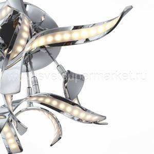 Ciocca изображение 2