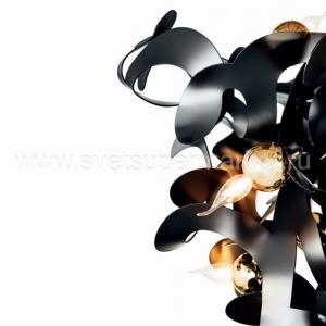 Kelp shapes изображение 3